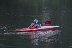 Chłopiec nastolatek kieruje kajakowego kajaka na szerokiej rzece zdjęcie stock