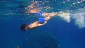 Chłopiec nur w Czerwonym morzu blisko rafy koralowa zdjęcie wideo