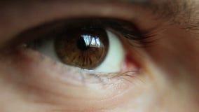 Chłopiec oczy zbiory