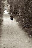 Spacer w drewnach Fotografia Stock