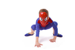 Chłopiec pięć rok w kostiumu Spider-Man zdjęcia royalty free