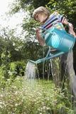 Chłopiec podlewanie Kwitnie W ogródzie zdjęcie royalty free