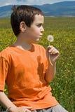 chłopiec podmuchowy dandelion Zdjęcie Royalty Free