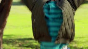 Chłopiec podrzucania jesieni liście zbiory wideo
