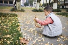 Chłopiec przy jesienią fotografia royalty free