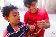 Chłopiec przy Ramesseum świątynią w Luxor, Egipt - zdjęcia stock