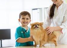 Chłopiec przy weterynaryjną lekarką z jego psem zdjęcie stock