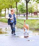 Chłopiec spacer z zwierzęciem domowym przez kałuży po wiosna deszczu Zdjęcia Stock