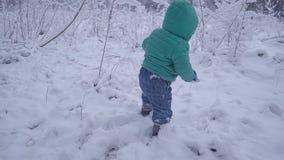 Chłopiec spacery i bawić się na śnieżnym drewnie, dziecka odprowadzenie na zima lasu zwolnionym tempie zbiory