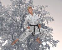 Chłopiec stażowy karate Zdjęcie Stock