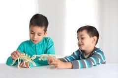 Chłopiec sztuka z zabawka koścami dinosaury fotografia stock