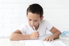 Chłopiec uczeń pisze w notatniku uczy lekcje obraz stock