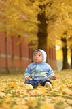 Chłopiec wśród ginkgo drzewnego liścia w jesieni Fotografia Royalty Free