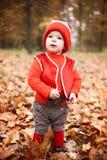 Chłopiec w kostiumu z dyniowym gnomem w jesień parku Zdjęcie Royalty Free