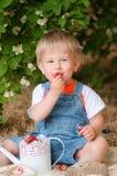 Chłopiec w lecie z truskawkami Zdjęcia Royalty Free