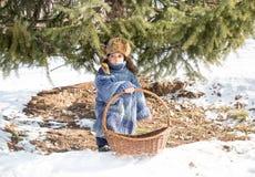 Chłopiec w nakrętce z earflaps bawić się zima parka Obrazy Royalty Free