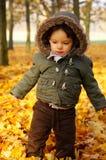 Chłopiec w parku Fotografia Royalty Free