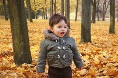 Chłopiec w parku Zdjęcie Royalty Free