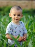 Chłopiec w polu uprawnym zdjęcie stock