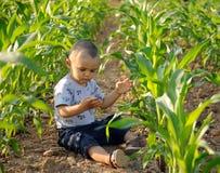 Chłopiec w polu uprawnym zdjęcia stock