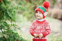Chłopiec w puloweru i kapeluszu czekaniu dla boże narodzenia w drewnie Obraz Royalty Free