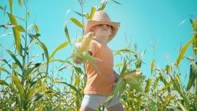 Chłopiec w słomianym kapeluszu bawić się w polu uprawnym dziecko trzyma kukurydzanych cobs i ono przedstawia jako kowboj zbiory