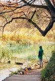 Chłopiec wantowy pobliski staw w jesień parku, kopyto_szewski jesieni pogodni dni zdjęcia stock