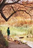 Chłopiec wantowy pobliski staw w jesień parku, kopyto_szewski jesieni pogodni dni obrazy royalty free
