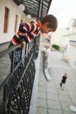Chłopiec wisząca od balkonu out Fotografia Stock