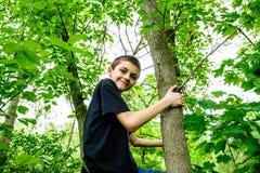 Chłopiec wspinaczkowy drzewo Obrazy Royalty Free