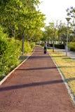 Chłopiec z hełmem jedzie MonoWheel na deptaku zdjęcie royalty free