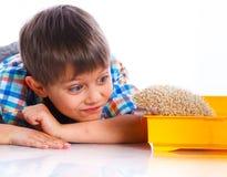 Chłopiec z jeżem Obrazy Stock