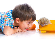 Chłopiec z jeżem Obrazy Royalty Free