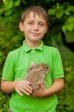 Chłopiec z królikiem w rękach Obraz Stock