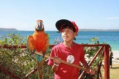 Chłopiec z papugą Zdjęcia Royalty Free