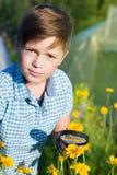 Chłopiec z powiększać - szkło w lecie obrazy royalty free