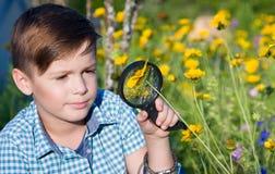 Chłopiec z powiększać - szkło w lecie zdjęcia stock