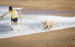 Chłopiec z psem na plaży Zdjęcie Stock