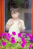 Chłopiec za okno w deszczu zdjęcia royalty free