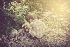 Chłopiec Znajduje Wielkanocnego królika królika zabawkę w ogródzie - Retro Obrazy Stock