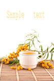 Chá com mar-espinheiro cerval Fotos de Stock