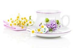 Chá de camomila Foto de Stock