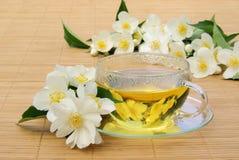 Chá do jasmim Imagens de Stock