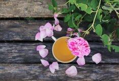 Ch? no estilo country no jardim do ver?o na vila Copo de Vintafe da tisana verde em placas de madeira resistidas e no rosa de flo foto de stock
