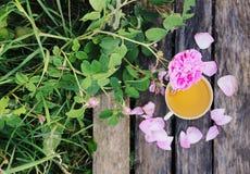 Ch? no estilo country no jardim do ver?o na vila Copo de Vintafe da tisana verde em placas de madeira resistidas e no rosa de flo fotos de stock royalty free
