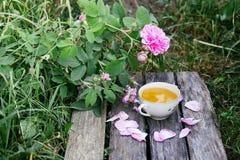 Ch? no estilo country no jardim do ver?o na vila Copo de Vintafe da tisana verde em placas de madeira resistidas e no rosa de flo foto de stock royalty free
