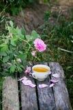Ch? no estilo country no jardim do ver?o na vila Copo de Vintafe da tisana verde em placas de madeira resistidas e no rosa de flo imagens de stock royalty free