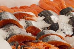 Chłodno czerwieni ryba w sklepie Zdjęcie Stock