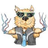 Chłodno kot royalty ilustracja
