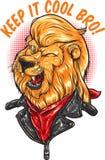 Chłodno lew Zdjęcia Royalty Free
